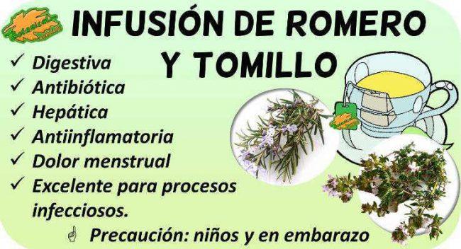 propiedades de la infusion de romero y tomillo beneficios
