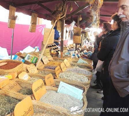 mercado plantas medicinales