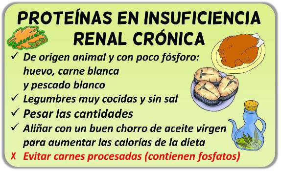 dieta insuficiencia renal proteinas alimentos recomendados
