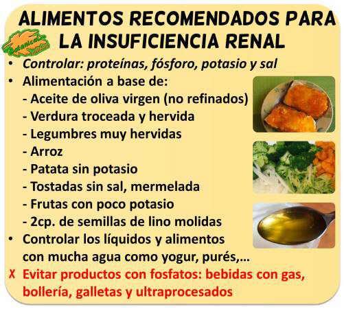 dieta insuficiencia renal proteinas alimentos