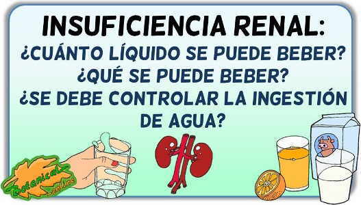 cuanto liquido se puede beber insuficiencia renal cronica