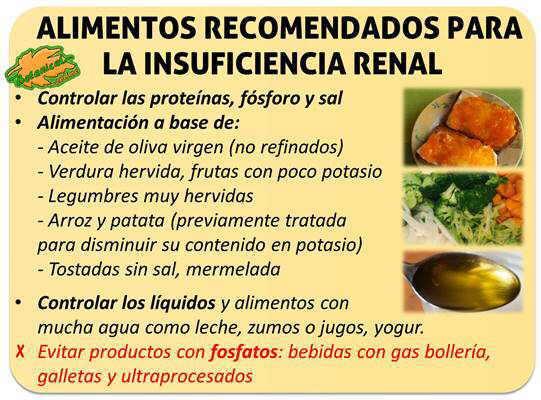 Dieta para la insuficiencia renal cr nica for Alimentos prohibidos para insuficiencia renal