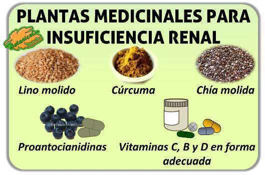 tratamiento de la insuficiencia renal crónica remedios naturales vitaminas omega 3