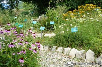 jardin botanic gombren