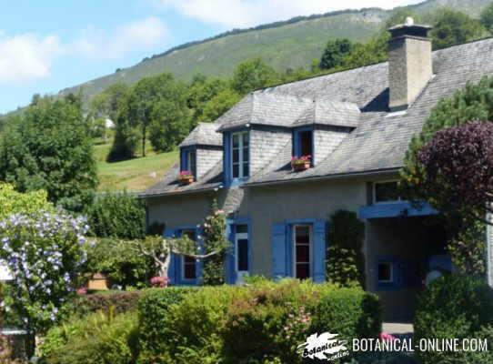 casa con jardin naturaleza