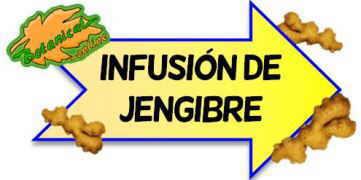 infusion de jengibre