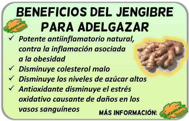 propiedades del jengibre para adelgazar