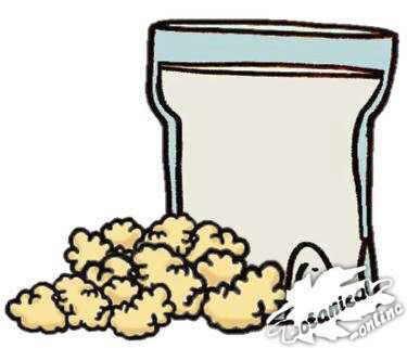 dibujo de kefir y fermentos, leche fermentada