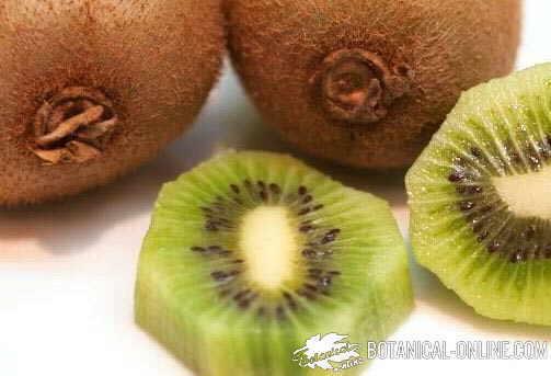 kiwi abierto