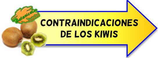 contraindicaciones de los kiwis