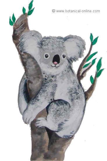 Dibujo de koala