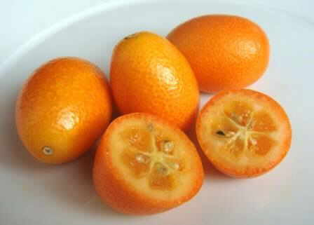 Foto de frutos de kumquat