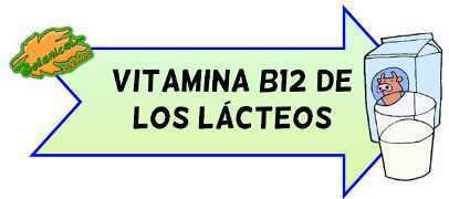 vitamina b12 de los lacteos