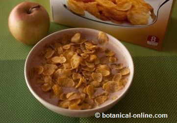 leche cacao cereales manzana