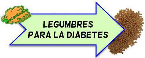 legumbres para la diabetes