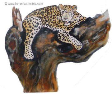 dibujo de leopardo
