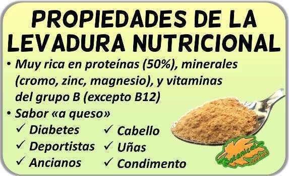 propiedades de la levadura nutricional o de cerveza y sus beneficios
