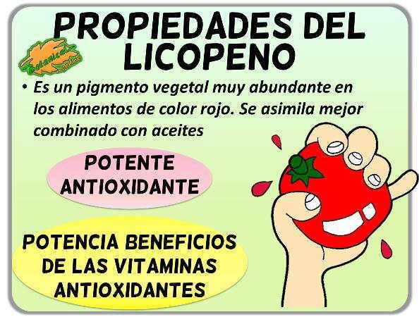 propiedades del licopeno flavonoide antioxidante del tomate