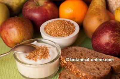 Alimentos en la dieta para la diabetes