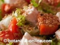 linaza ensalada