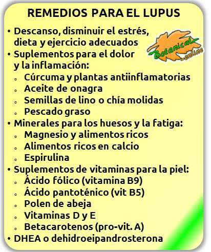 lupus plantas remedios y suplementos utilizados tratamiento natural