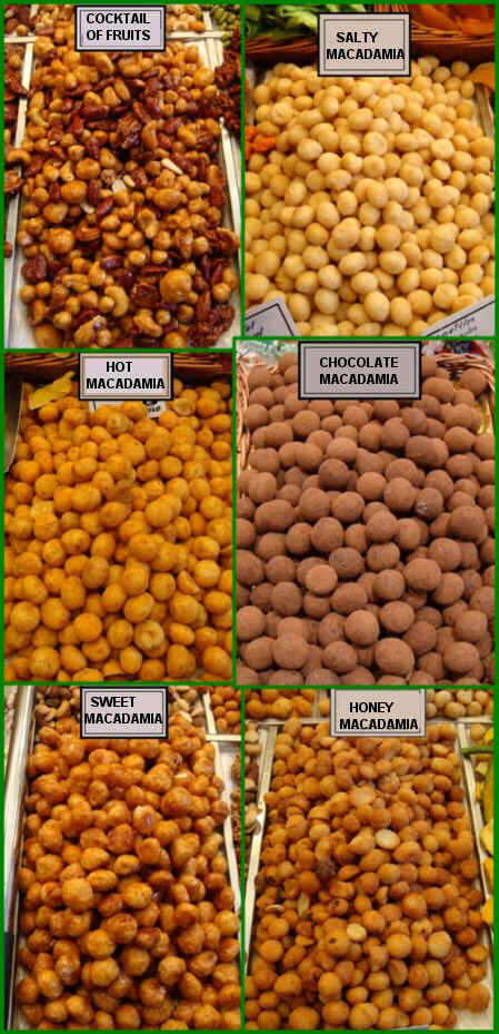 Different types of macadamia nuts