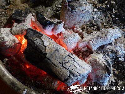 madera leña fuego