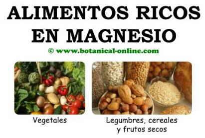 Alimentos ricos en magnesio para la osteoporosis