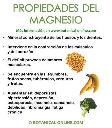 Propiedades del magnesio - En que alimentos encontramos magnesio ...