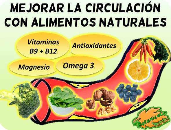 dieta mala circulacion arteriosclerosis
