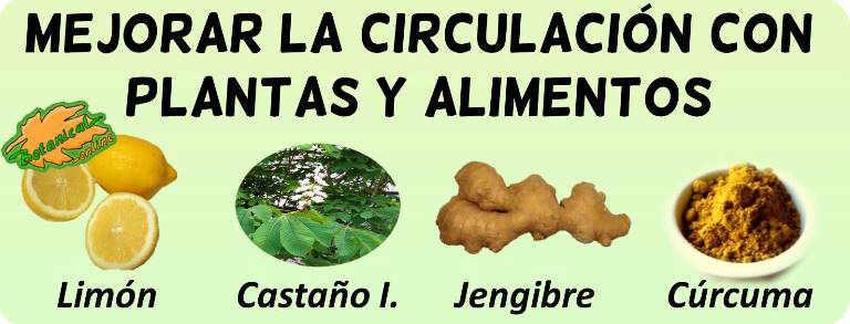 plantas medicinales remedios mala circulacion