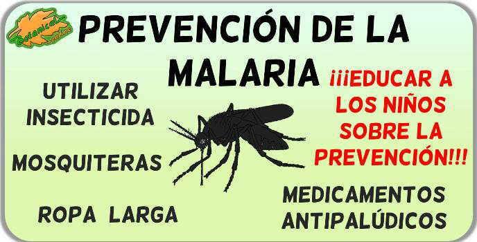 remedios prevencion de la malaria