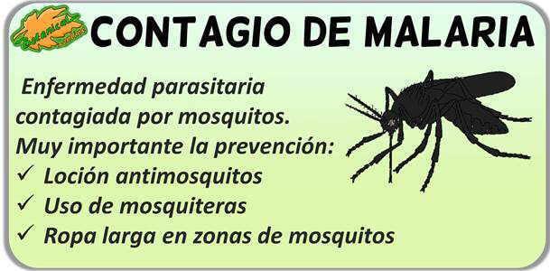 contagio tratamiento malaria paludismo tipo mosquito