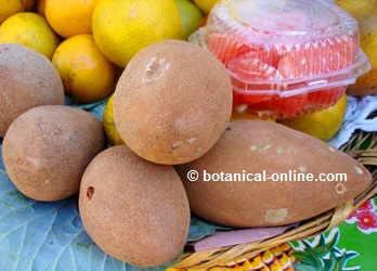 frutos de mamey en un mercado