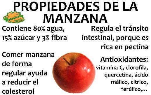 Resultado de imagen para nutricion propiedades manzana