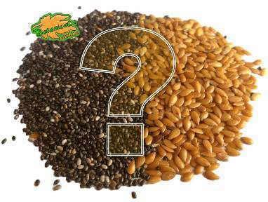 composicion semillas de lino