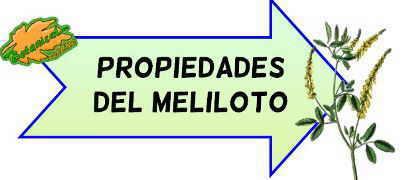 propiedades del meliloto