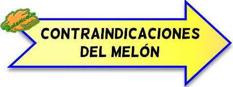 condraindicaciones del melon
