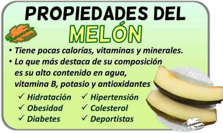 Propiedades medicinales vitaminas beneficios melones