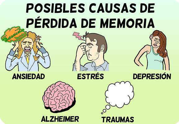 sintomas perdida memoria causas