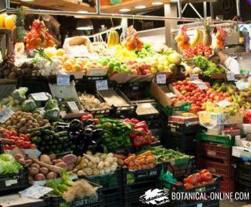 frutas verduras