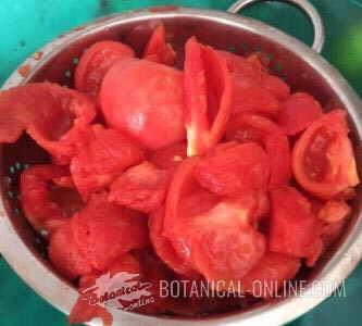 tomate pulpa