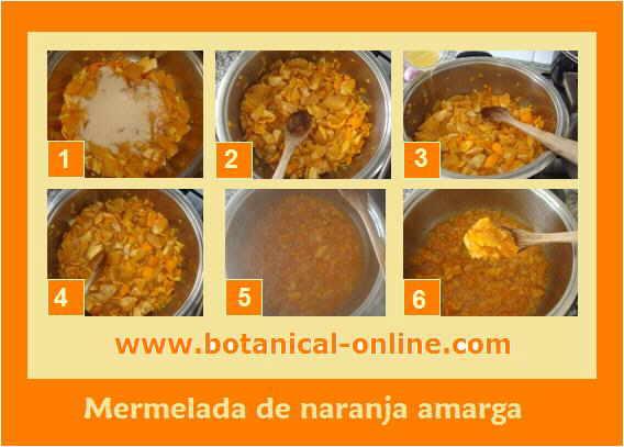Elaboración de mermelada de naranja paso a paso