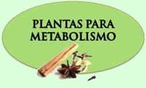 Remedios del metabolismo
