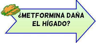 toxicidad metformina