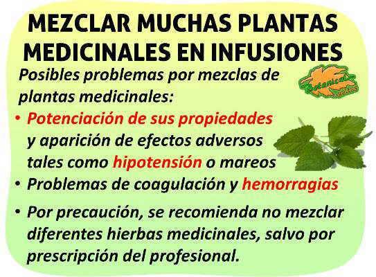 es malo mezclar mas de dos plantas en infusiones