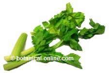 acido urico dieta recomendada las fresas son malas para el acido urico dieta para acido urico bajo