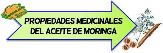 propiedades medicinales aceite de moringa
