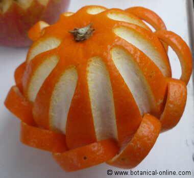 Naranja con una presentacion especial
