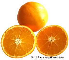 foto de naranja con el fruto entero y abierto